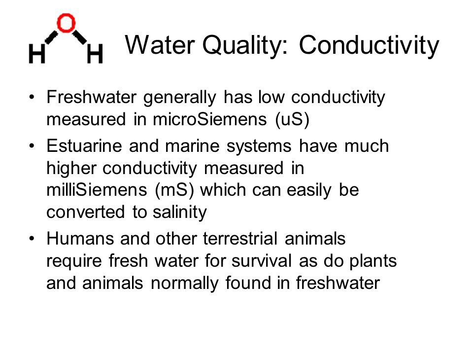 Water Quality: Conductivity Freshwater generally has low conductivity measured in microSiemens (uS) Estuarine and marine systems have much higher conductivity measured in milliSiemens (mS) which can easily be converted to salinity Humans and other terrestrial animals require fresh water for survival as do plants and animals normally found in freshwater