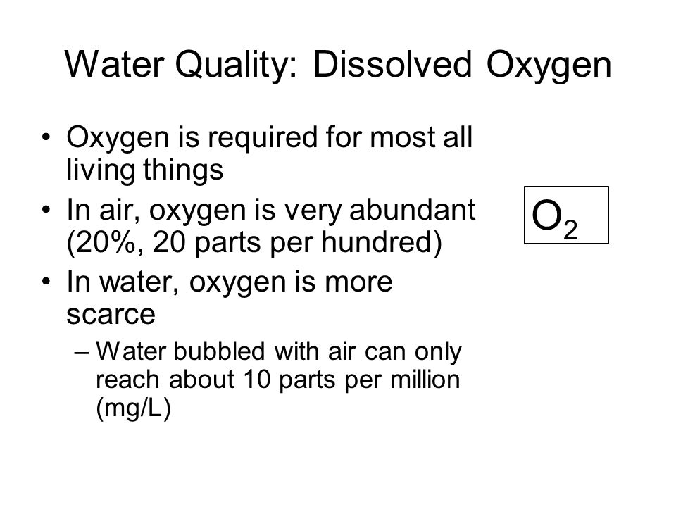 Water Quality: Dissolved Oxygen Oxygen is required for most all living things In air, oxygen is very abundant (20%, 20 parts per hundred) In water, oxygen is more scarce –Water bubbled with air can only reach about 10 parts per million (mg/L) O2O2