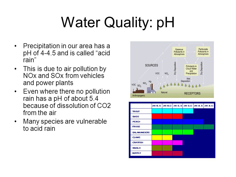 Water Quality: pH Precipitation in our area has a pH of 4-4.5 and is called acid rain This is due to air pollution by NOx and SOx from vehicles and power plants Even where there no pollution rain has a pH of about 5.4 because of dissolution of CO2 from the air Many species are vulnerable to acid rain