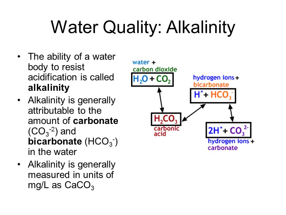 Water Quality: Alkalinity The ability of a water body to resist acidification is called alkalinity Alkalinity is generally attributable to the amount of carbonate (CO 3 -2 ) and bicarbonate (HCO 3 - ) in the water Alkalinity is generally measured in units of mg/L as CaCO 3