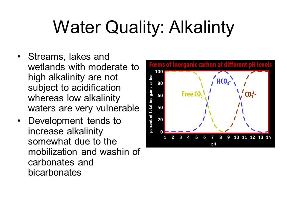 Water Quality: Alkalinty Streams, lakes and wetlands with moderate to high alkalinity are not subject to acidification whereas low alkalinity waters are very vulnerable Development tends to increase alkalinity somewhat due to the mobilization and washin of carbonates and bicarbonates