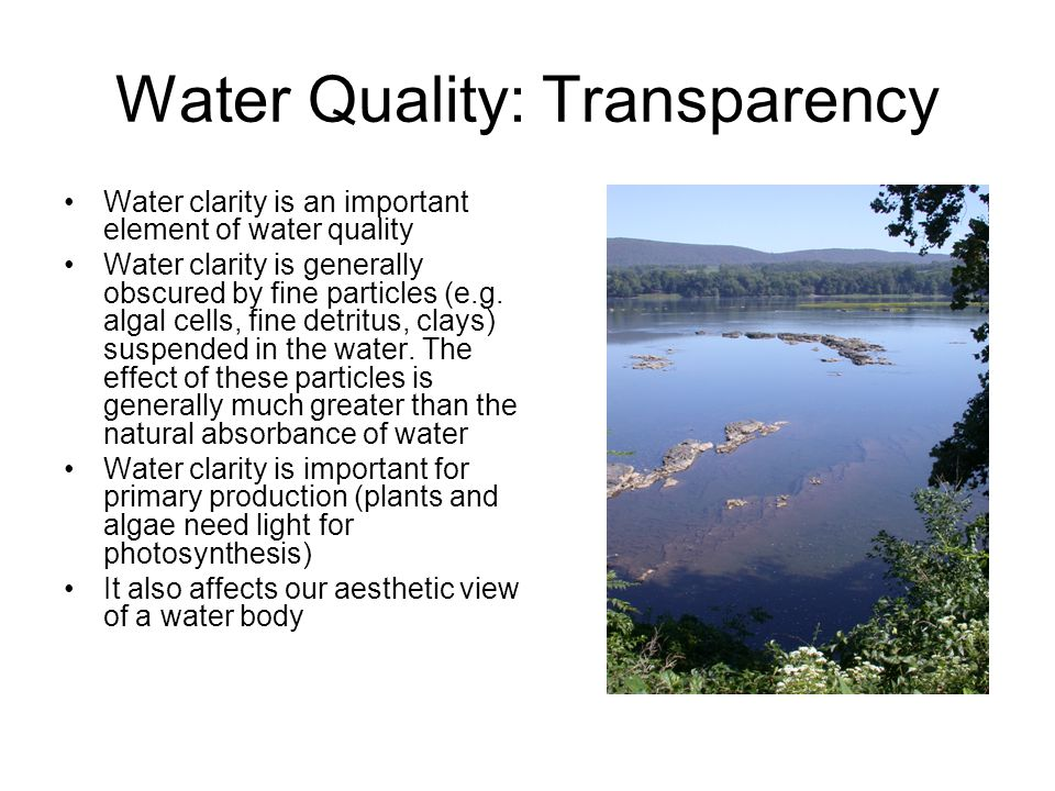 Water Quality: Transparency Water clarity is an important element of water quality Water clarity is generally obscured by fine particles (e.g.