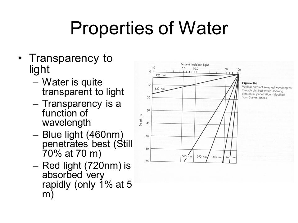 Properties of Water Transparency to light –Water is quite transparent to light –Transparency is a function of wavelength –Blue light (460nm) penetrates best (Still 70% at 70 m) –Red light (720nm) is absorbed very rapidly (only 1% at 5 m)