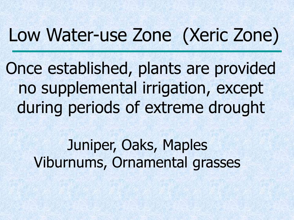 Low Water-use Zone (Xeric Zone) Once established, plants are provided no supplemental irrigation, except during periods of extreme drought Juniper, Oaks, Maples Viburnums, Ornamental grasses