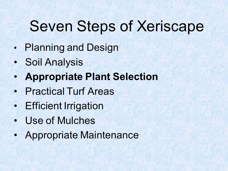Seven Steps of Xeriscape Planning and Design Soil Analysis Appropriate Plant Selection Practical Turf Areas Efficient Irrigation Use of Mulches Appropriate Maintenance