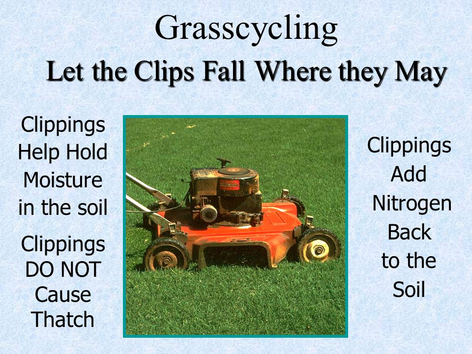 Grasscycling Let the Clips Fall Where they May Clippings Add Nitrogen Back to the Soil Clippings Help Hold Moisture in the soil Clippings DO NOT Cause Thatch