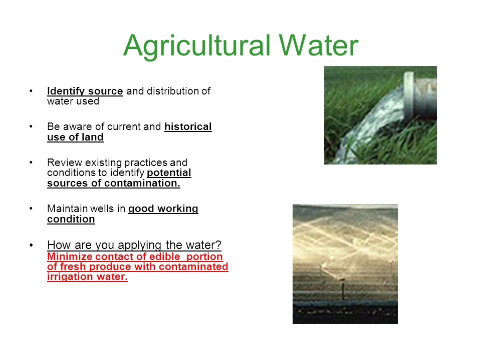 Agricultural Water Identify source and distribution of water used Be aware of current and historical use of land Review existing practices and conditions to identify potential sources of contamination.