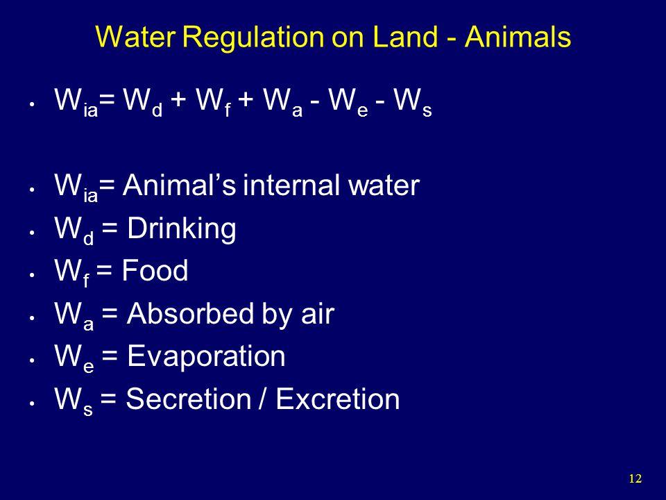 12 Water Regulation on Land - Animals W ia = W d + W f + W a - W e - W s W ia = Animals internal water W d = Drinking W f = Food W a = Absorbed by air W e = Evaporation W s = Secretion / Excretion