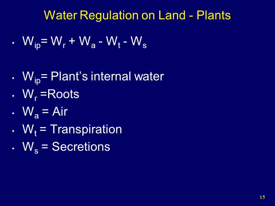 15 Water Regulation on Land - Plants W ip = W r + W a - W t - W s W ip = Plants internal water W r =Roots W a = Air W t = Transpiration W s = Secretions