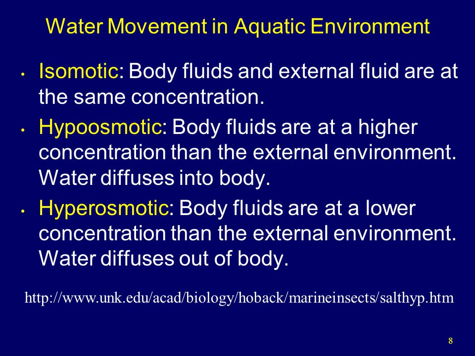 8 Water Movement in Aquatic Environment Isomotic: Body fluids and external fluid are at the same concentration.