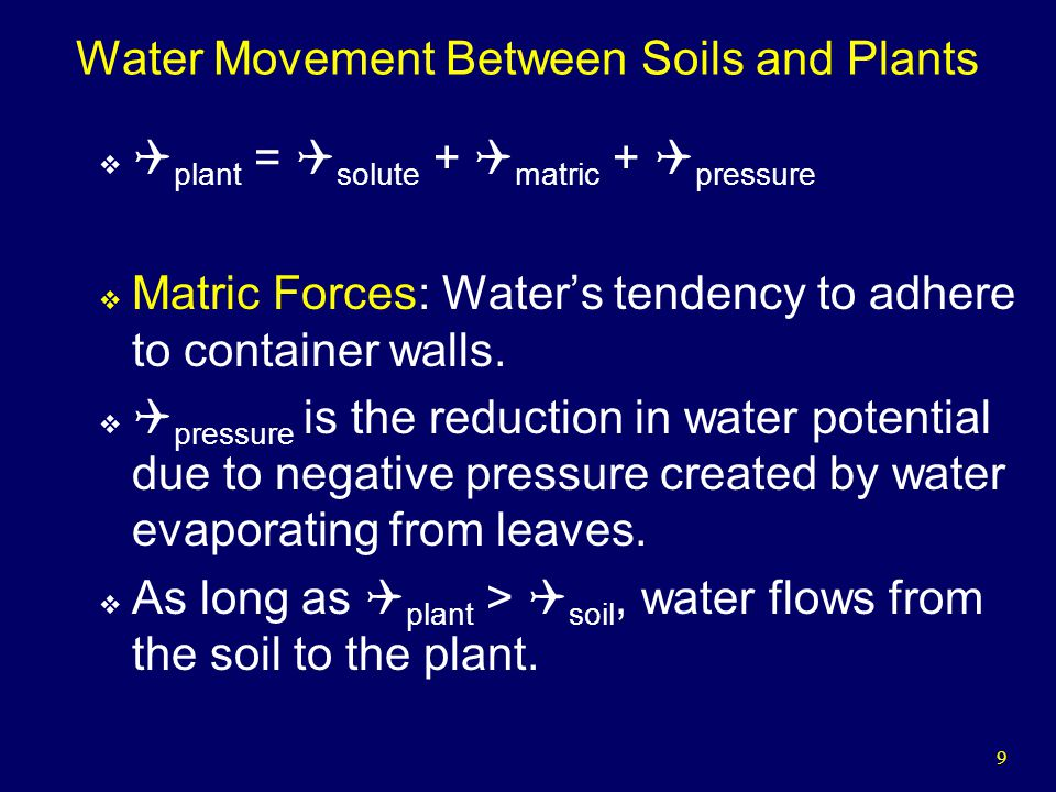 9 Water Movement Between Soils and Plants plant = solute + matric + pressure Matric Forces: Waters tendency to adhere to container walls.