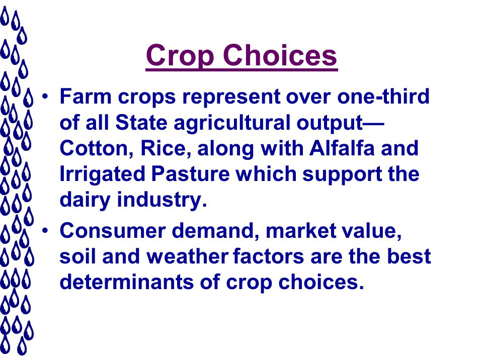 Crop Choices Farm crops represent over one-third of all State agricultural output Cotton, Rice, along with Alfalfa and Irrigated Pasture which support the dairy industry.