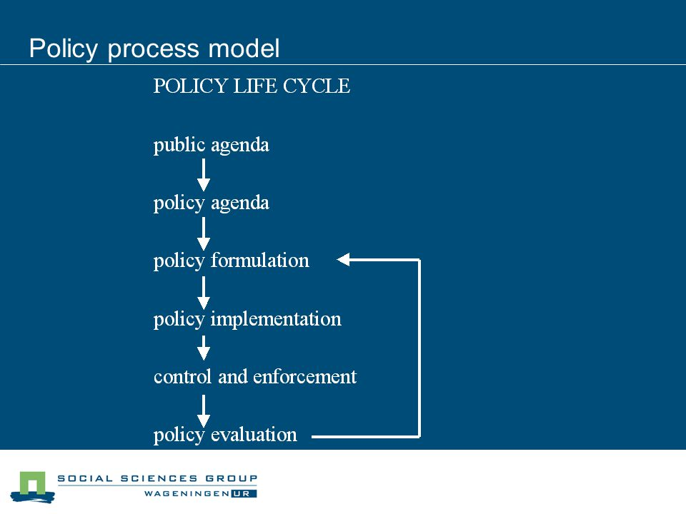 Policy process model