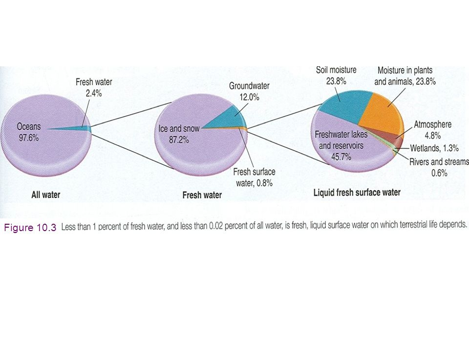 Fresh Water Resources Depend on Precipitation Patterns [Creates water-rich & water poor countries] Figure 10.2
