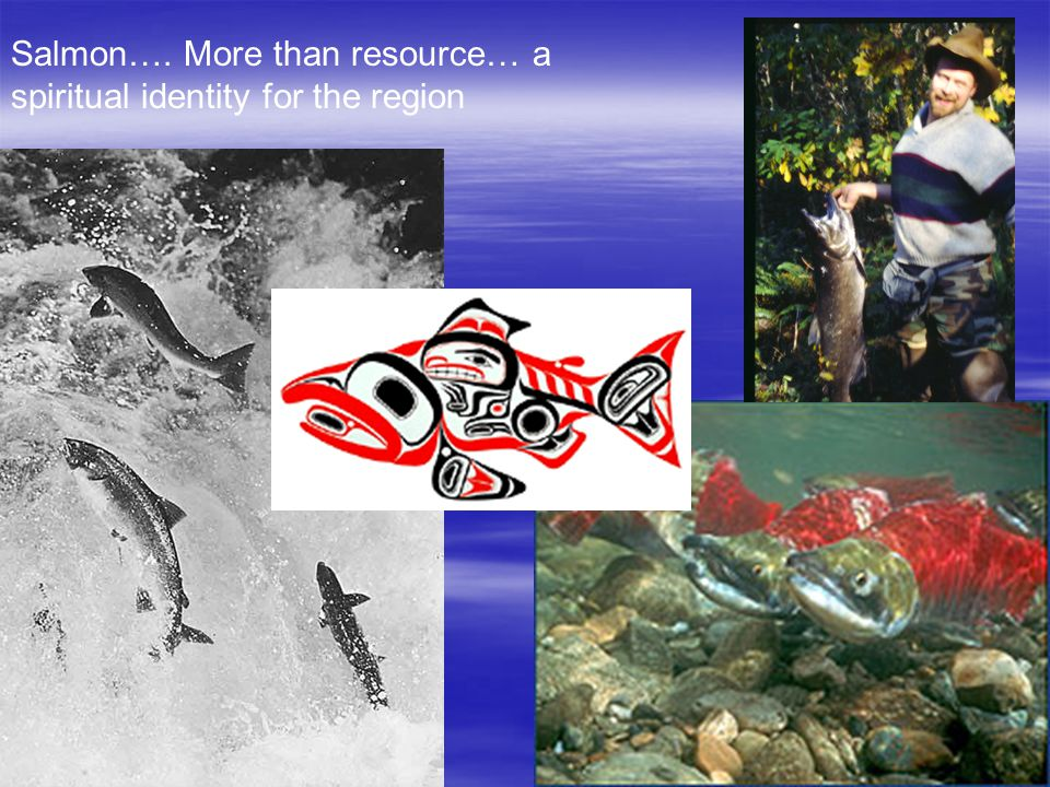 Salmon…. More than resource… a spiritual identity for the region