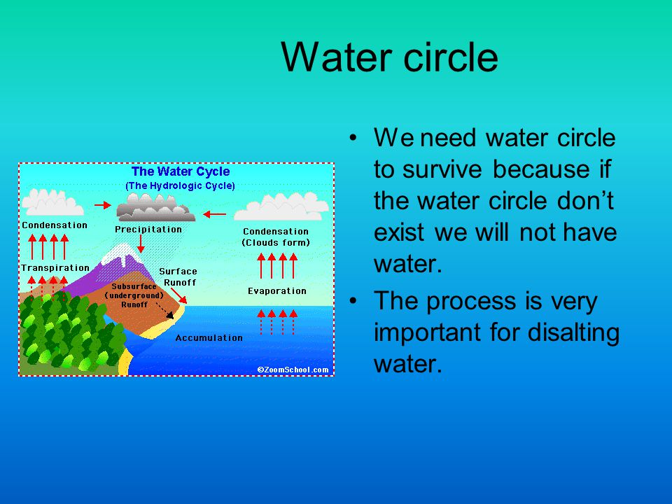 Water circle We need water circle to survive because if the water circle dont exist we will not have water.