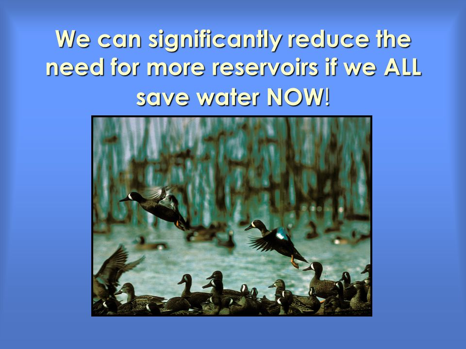 We can significantly reduce the need for more reservoirs if we ALL save water NOW !