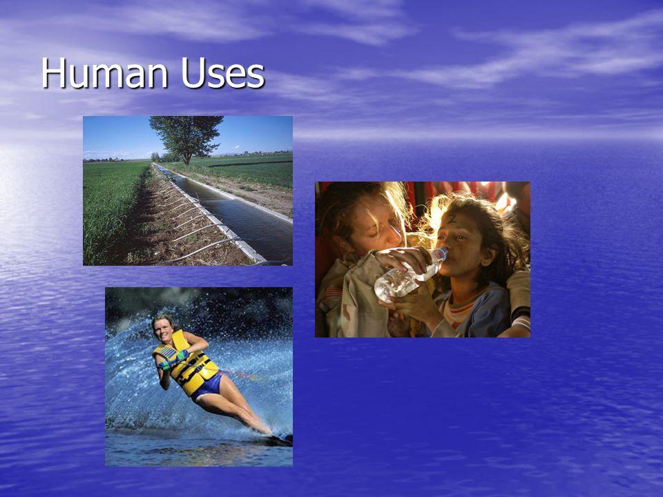 Human Uses