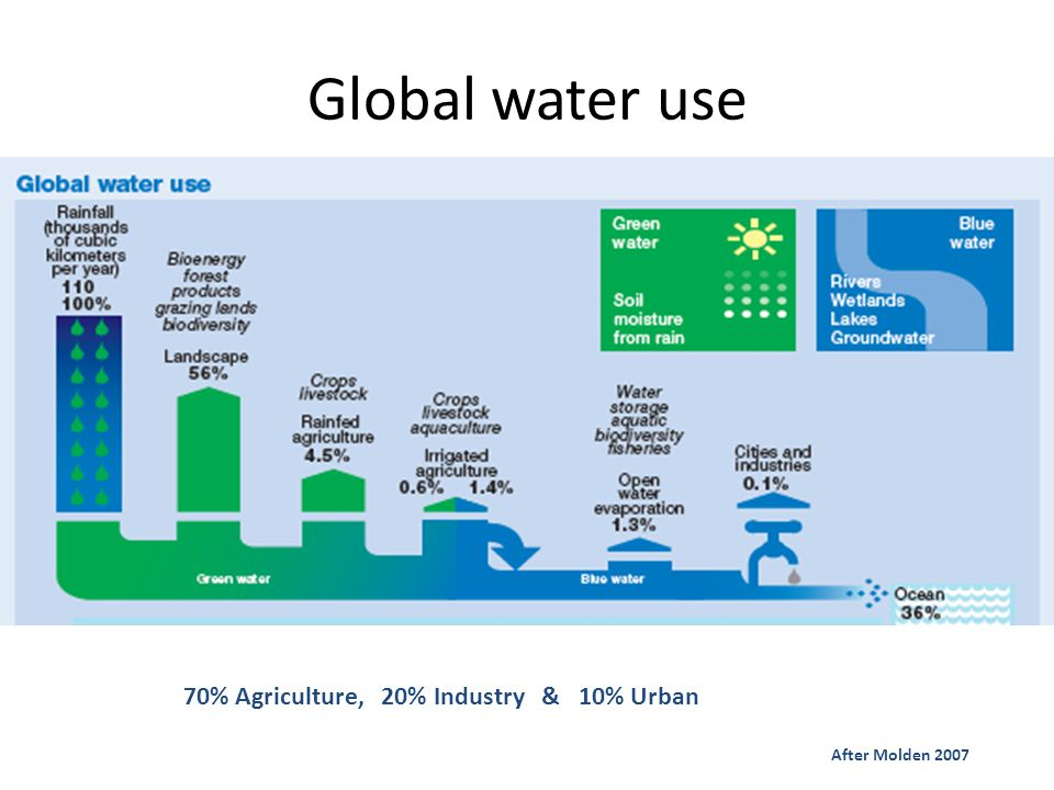 Global water use 70% Agriculture, 20% Industry & 10% Urban After Molden 2007