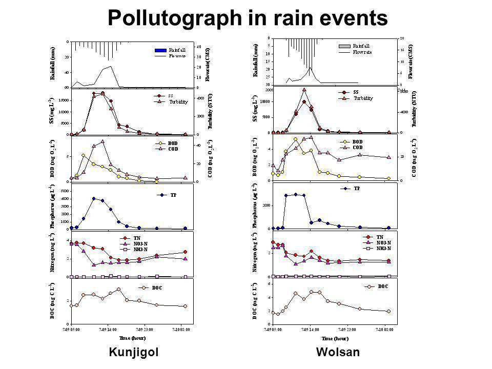 KunjigolWolsan Pollutograph in rain events