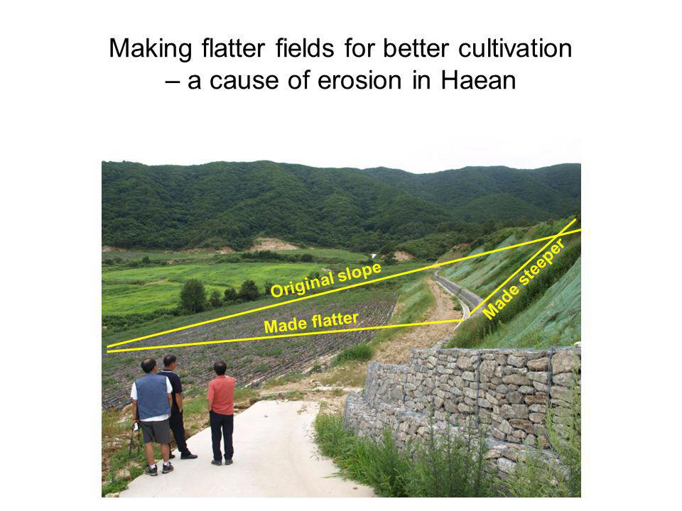 Making flatter fields for better cultivation – a cause of erosion in Haean Original slope Made flatter Made steeper