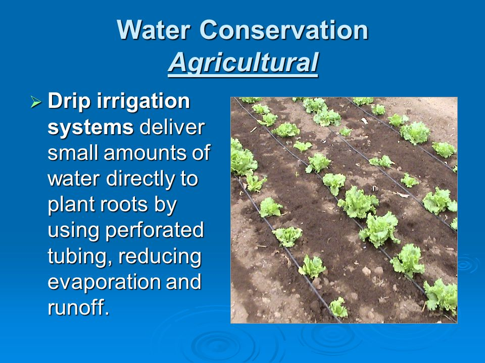 Water Conservation Agricultural Drip irrigation systems deliver small amounts of water directly to plant roots by using perforated tubing, reducing ev