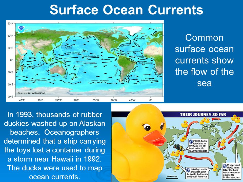 The Ocean A Global Temperature Regulator The main function of the world ocean is to: The main function of the world ocean is to: Absorb & store energy from the sun Absorb & store energy from the sunHow.