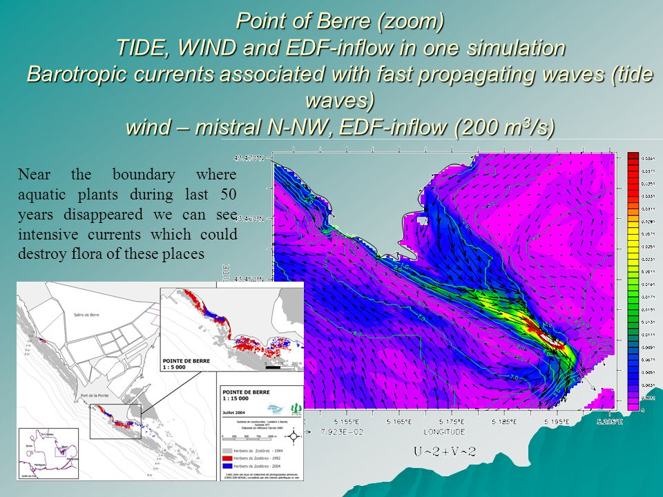 Point of Berre (zoom) TIDE, WIND and EDF-inflow in one simulation Barotropic currents associated with fast propagating waves (tide waves) wind – mistral N-NW, EDF-inflow (200 m 3 /s) Point of Berre (zoom) TIDE, WIND and EDF-inflow in one simulation Barotropic currents associated with fast propagating waves (tide waves) wind – mistral N-NW, EDF-inflow (200 m 3 /s) Near the boundary where aquatic plants during last 50 years disappeared we can see intensive currents which could destroy flora of these places