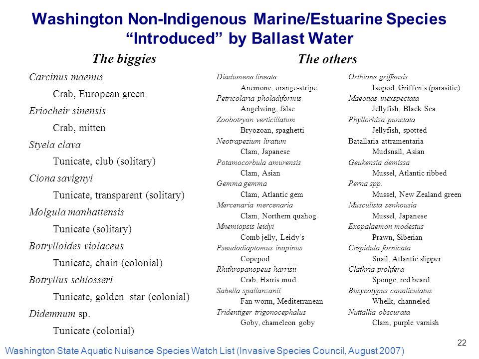 22 Washington Non-Indigenous Marine/Estuarine Species Introduced by Ballast Water The biggies Carcinus maenus Crab, European green Eriocheir sinensis