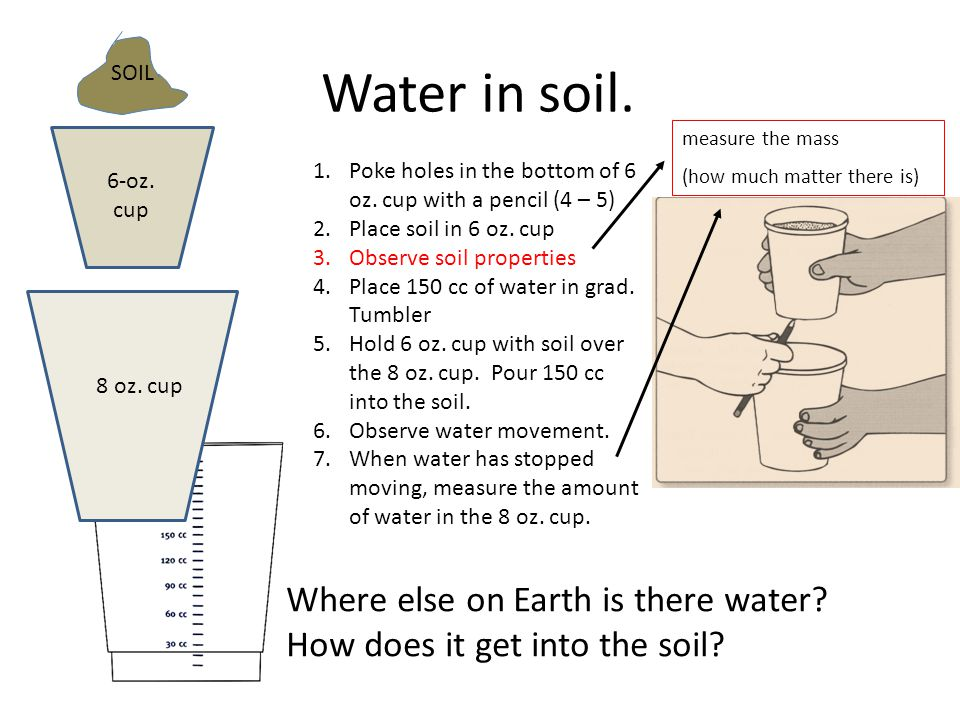 Water in soil. SOIL 6-oz. cup 8 oz. cup 1.Poke holes in the bottom of 6 oz.