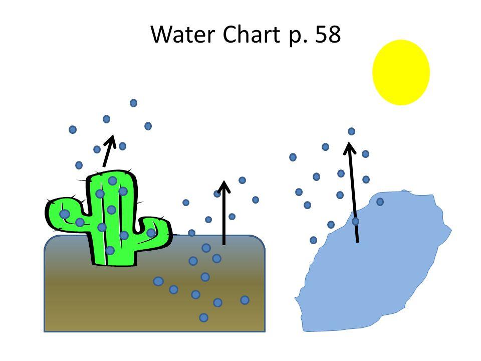Water Chart p. 58