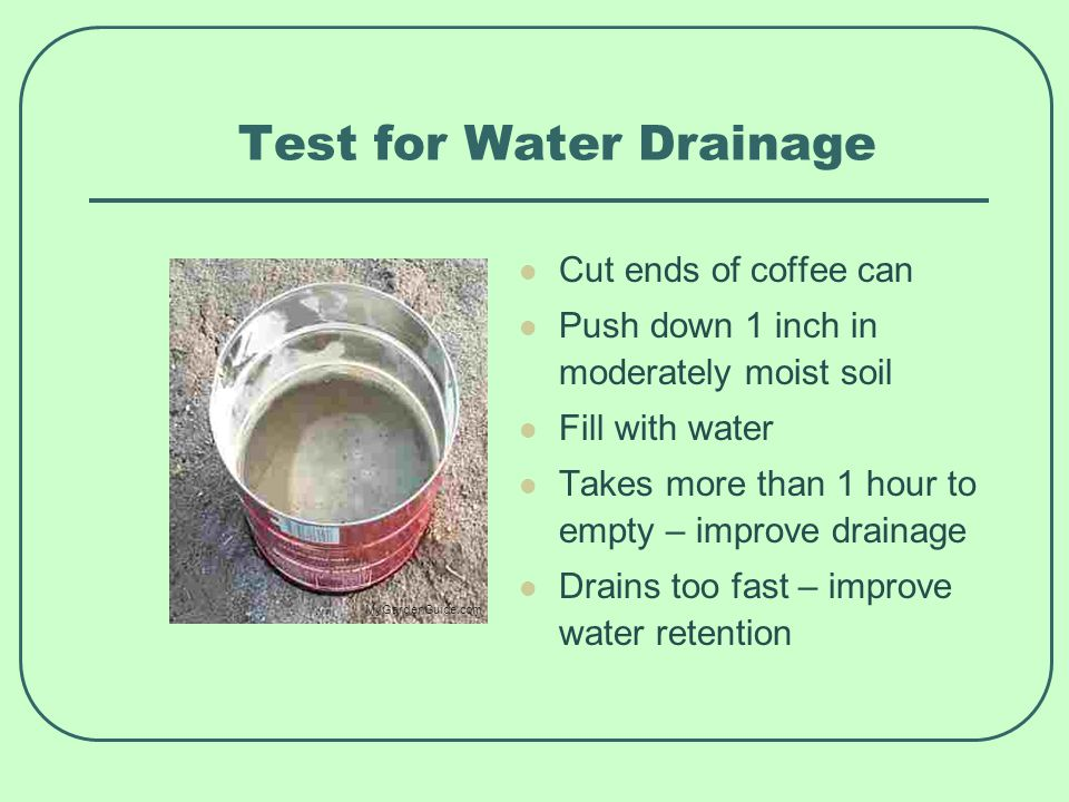 Test for Water Drainage Cut ends of coffee can Push down 1 inch in moderately moist soil Fill with water Takes more than 1 hour to empty – improve drainage Drains too fast – improve water retention MyGardenGuide.com