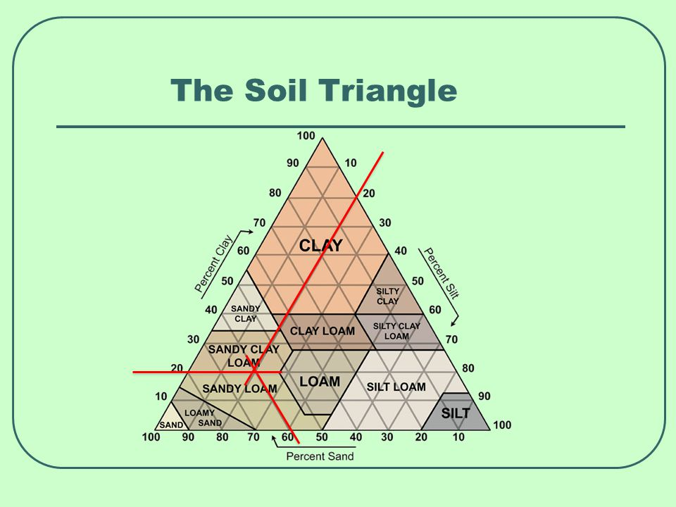 Soil and pH A pH of 7 is neutral Below 7 is acidic The lower the number, the more acidic Above 7 is alkaline The higher the number, the more alkaline Roses will tolerate a pH range from 5.5 to 7.8 But roses do best in a slightly acidic soil – a pH of 6.0 – 6.5 Test and adjust the pH as needed