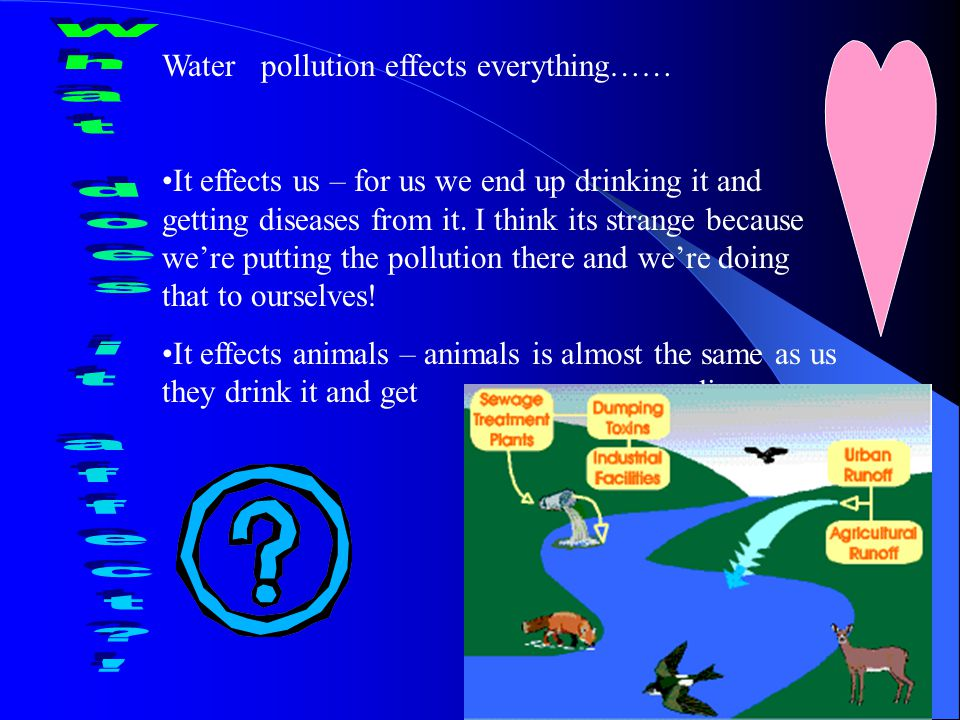There is water pollution all around the world and is a major problem to us and other animals.