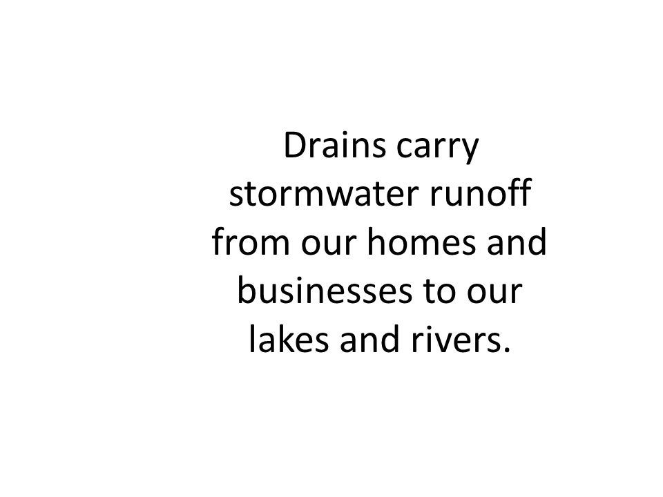 Drains carry stormwater runoff from our homes and businesses to our lakes and rivers.