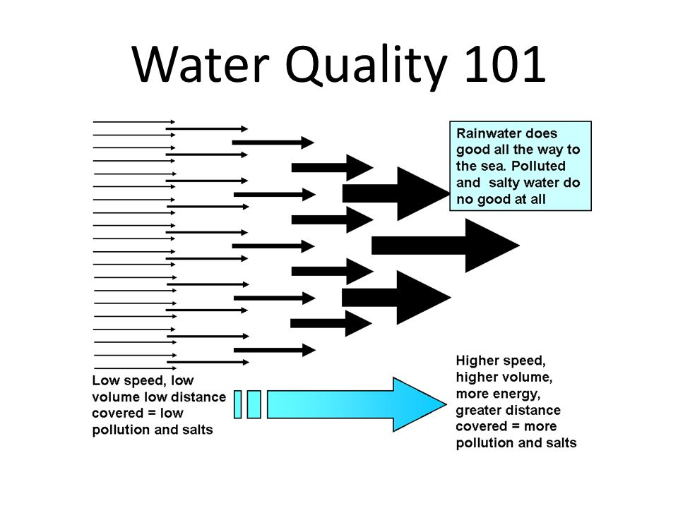 Water Quality 101