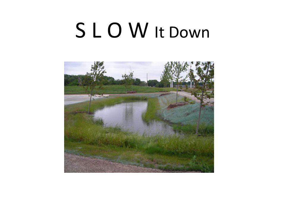 S L O W It Down