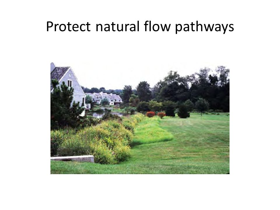 Protect natural flow pathways