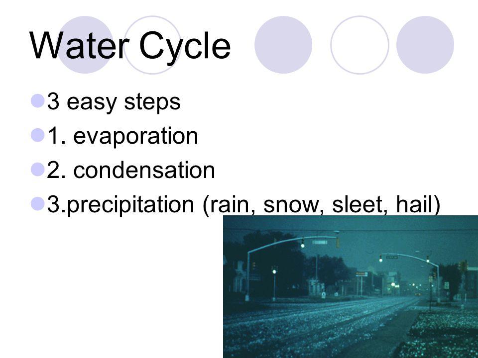 Water Cycle 3 easy steps 1. evaporation 2. condensation 3.precipitation (rain, snow, sleet, hail)