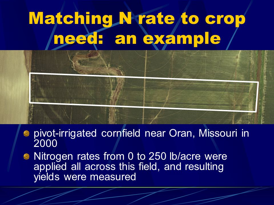 Matching N rate to crop need: an example pivot-irrigated cornfield near Oran, Missouri in 2000 Nitrogen rates from 0 to 250 lb/acre were applied all across this field, and resulting yields were measured