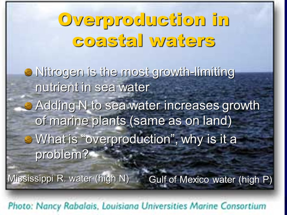 Overproduction in coastal waters Nitrogen is the most growth-limiting nutrient in sea water Adding N to sea water increases growth of marine plants (same as on land) What is overproduction, why is it a problem.