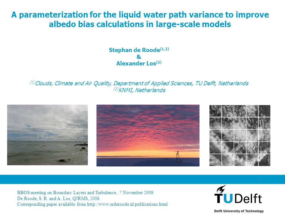 LES fields Is temperature important for liquid water fluctuations?