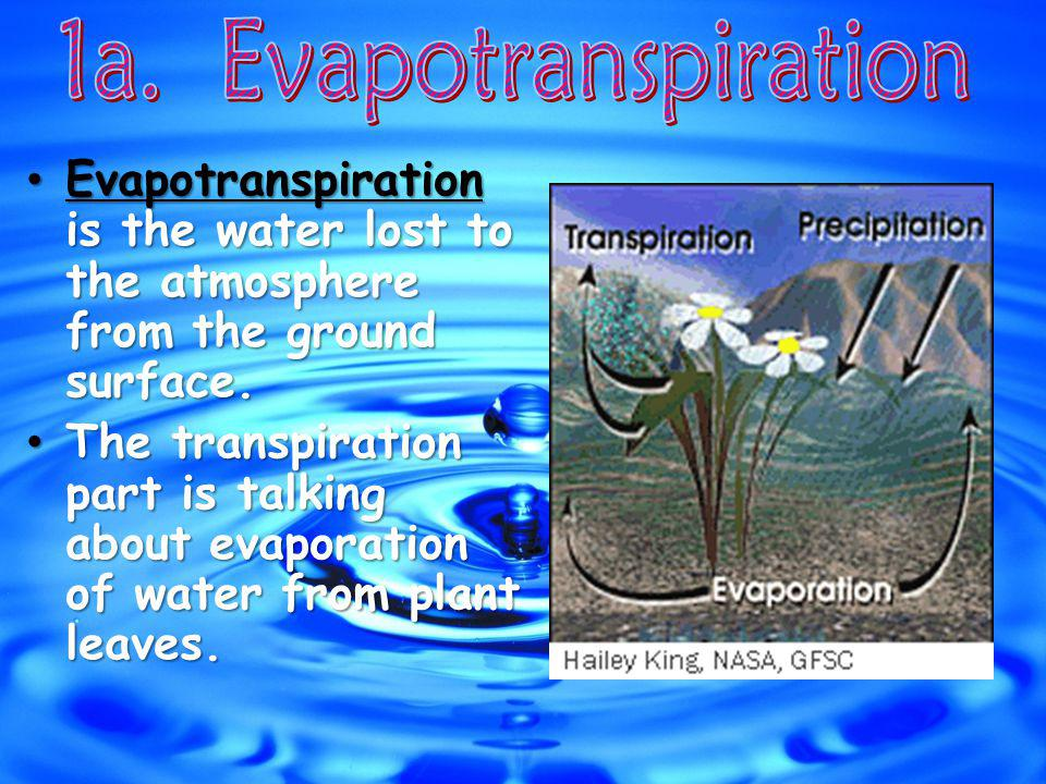 Evapotranspiration is the water lost to the atmosphere from the ground surface.