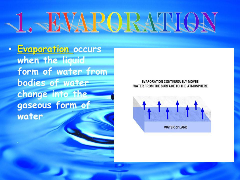 Evaporation Evaporation occurs when the liquid form of water from bodies of water change into the gaseous form of water