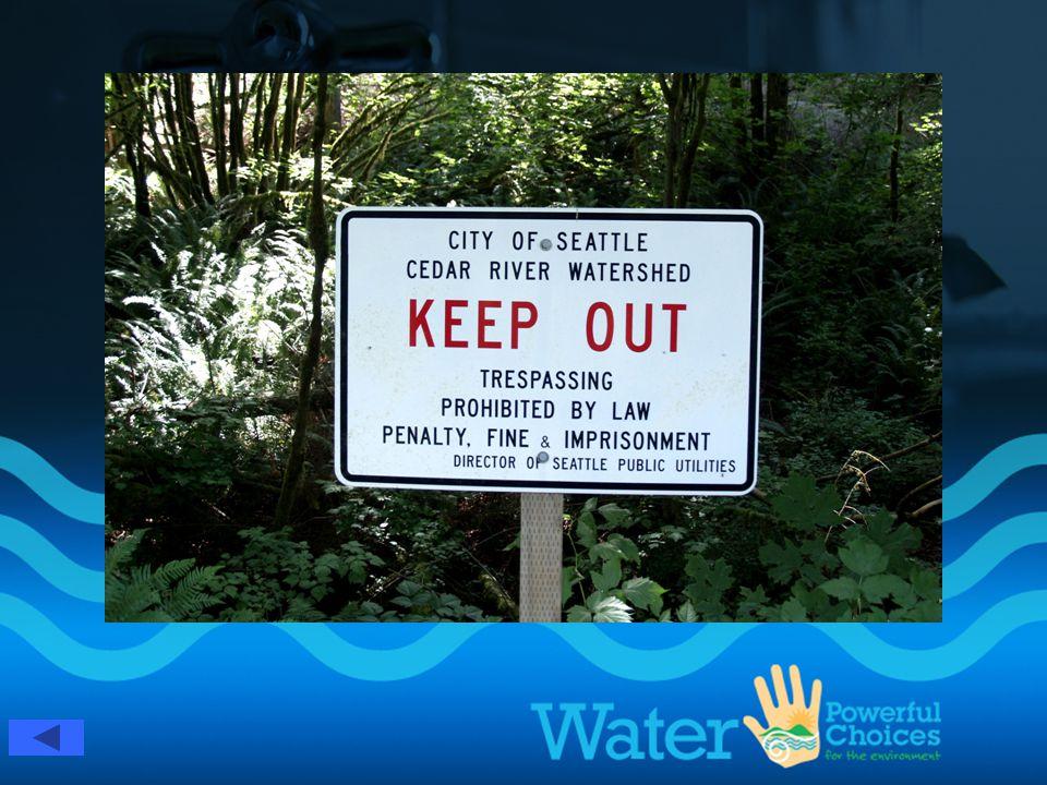 Cedar River Watershed