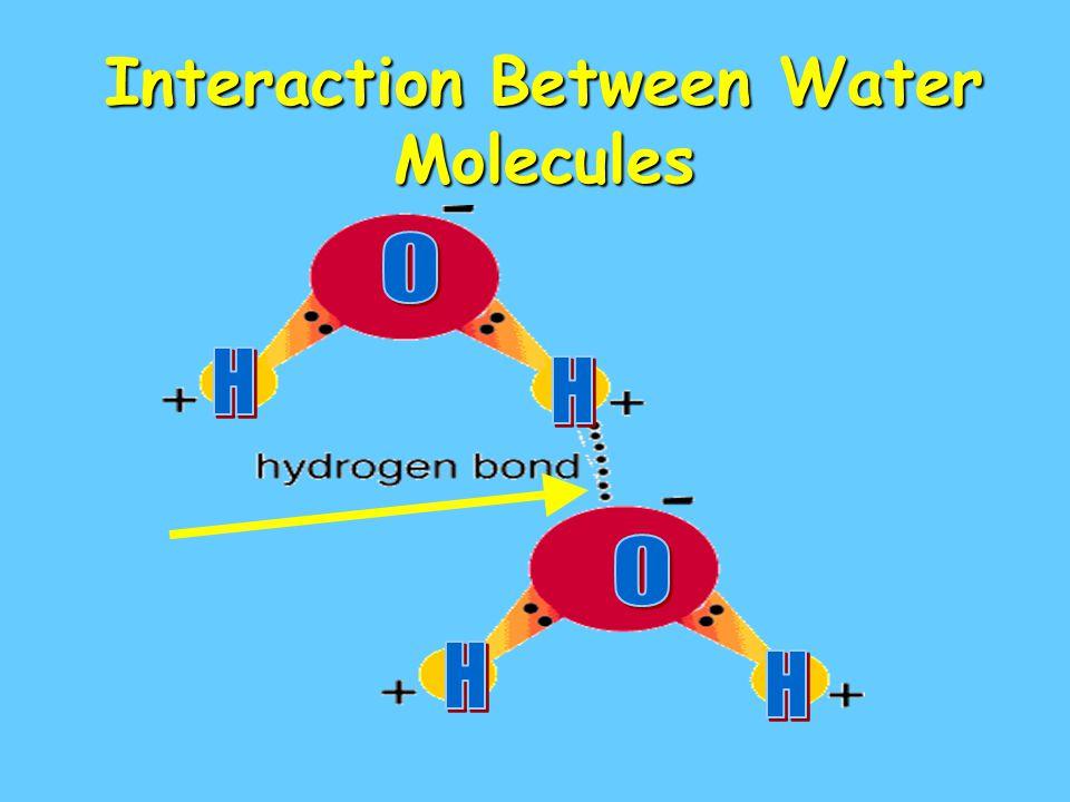 Interaction Between Water Molecules