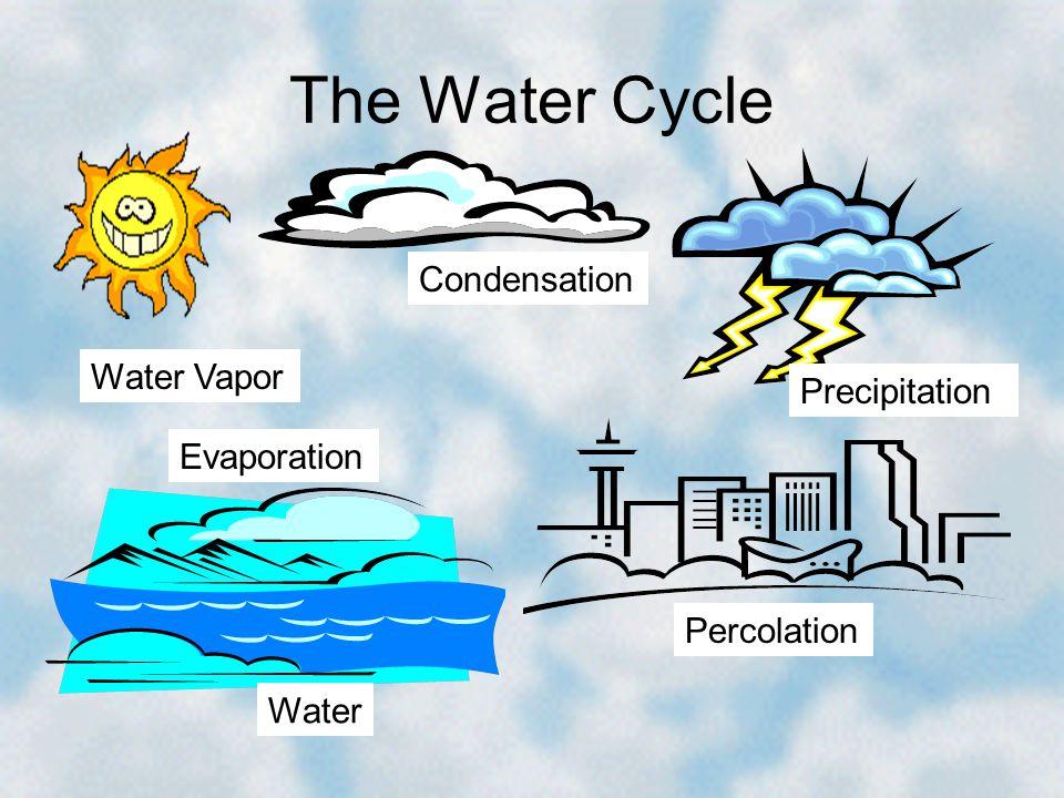 The Water Cycle Condensation Water Vapor Water Precipitation Evaporation Percolation