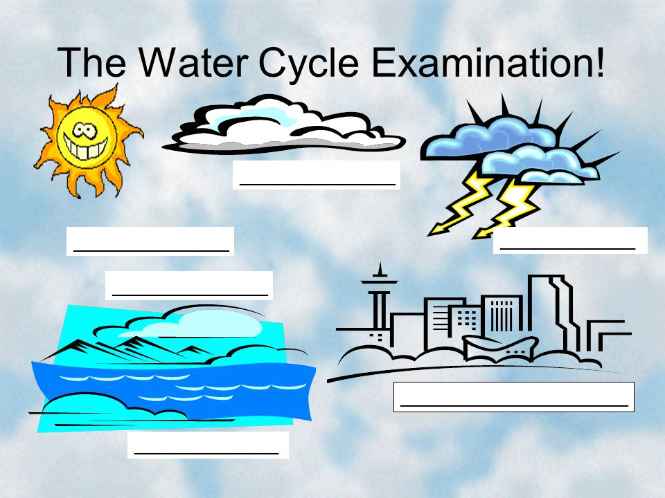 The Water Cycle Examination! _______________ ______________________ _______________ ________________ _______________