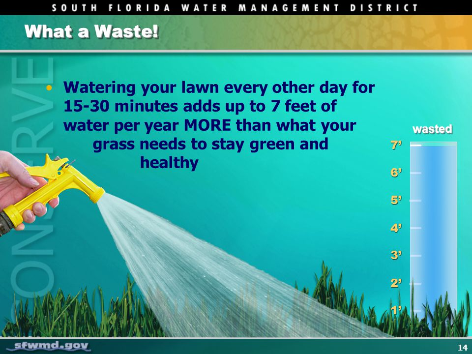 14 What a Waste! 1 1 2 2 3 3 4 4 5 5 6 6 7 7 Watering your lawn every other day for 15-30 minutes adds up to 7 feet of water per year MORE than what y