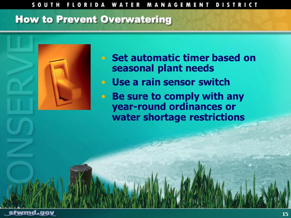 15 How to Prevent Overwatering Set automatic timer based on seasonal plant needs Use a rain sensor switch Be sure to comply with any year-round ordina